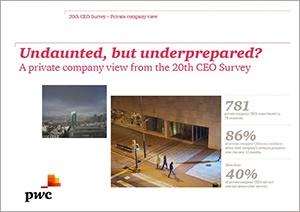 Private-company-CEO-Survey-kansi.jpg